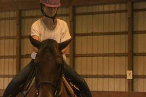 Horse Expo Session 3 2013