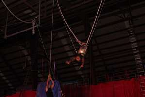Circus session 4 2014 camera 5