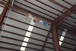 Postcamp Circus Camera 1